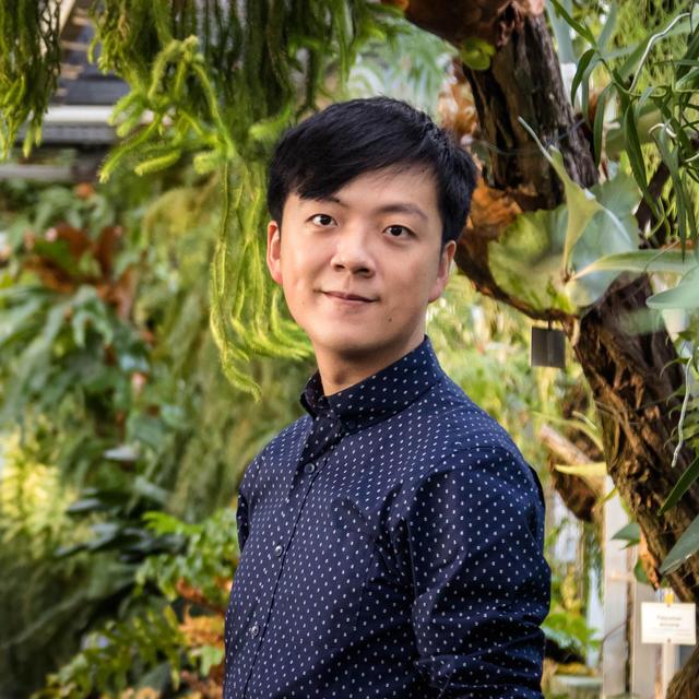 Ting Hang Hung